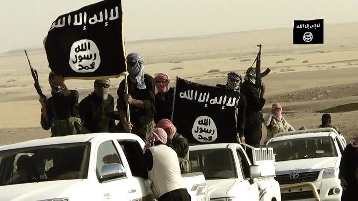 5 حقائق عن المجموعات المتشددة في سيناء