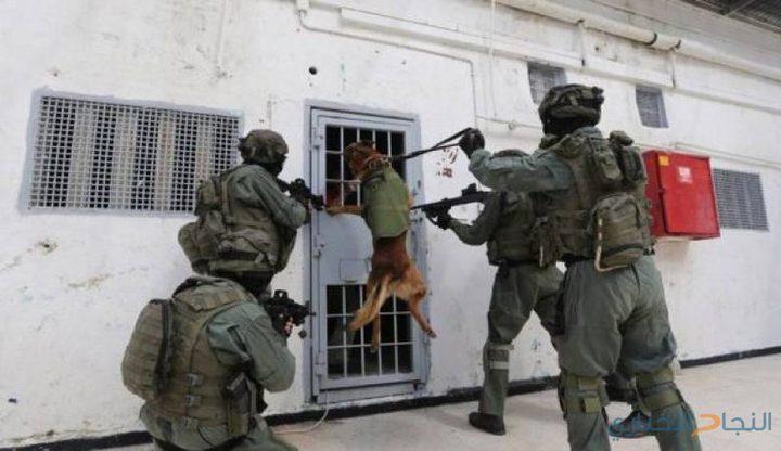 أبو بكر: حكومة الاحتلال تستغل كل الظروف للتفرد بالأسرى