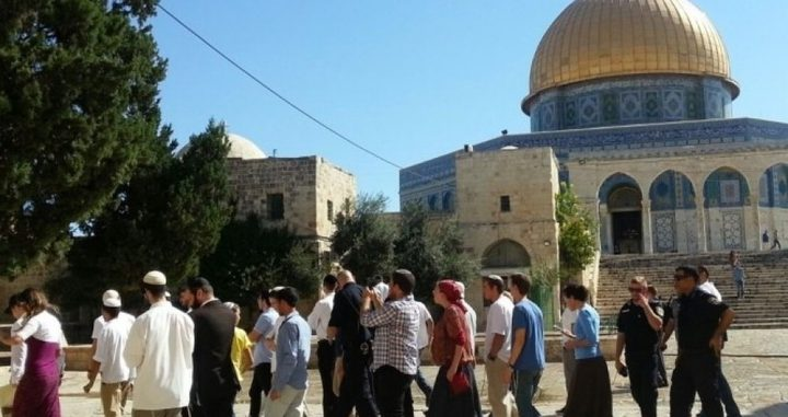 الأوقاف:الاحتلال انتهك ودنّس الأقصى أكثر من 30 مرة الشهر الماضي