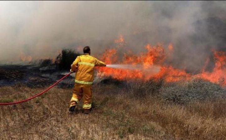 الاحتلال يزعم اندلاع حريق باشكول جراء اطلاق بالونات حارقة من غزة
