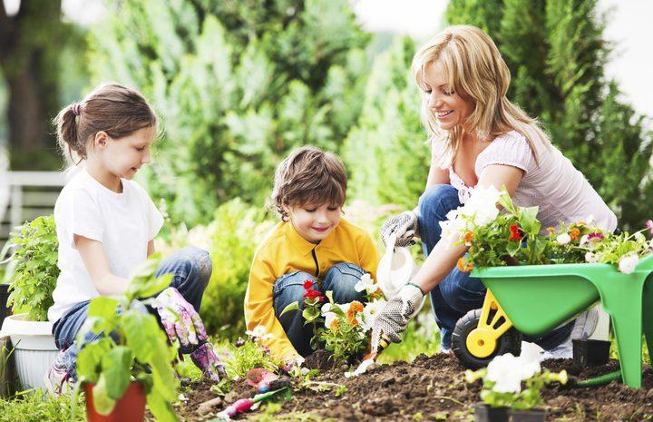 الفراغ عدو الإجازة الصيفية والعائلة تواجه غياب الأنشطة المفيدة