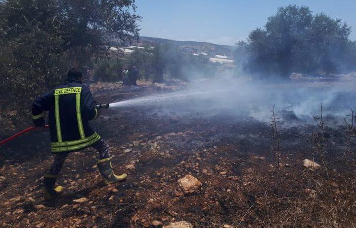 اخماد حريق أتى على 5 دونمات مزروعة بالقمح و50 شجرة زيتون