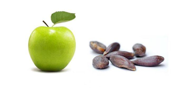 أبرزها بذور التفاح .. هذه الأطعمة قد تكون سامة للغاية