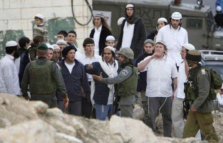مستوطنون يعتدون على مواطنين في حي  تل ارميدة وسط الخليل