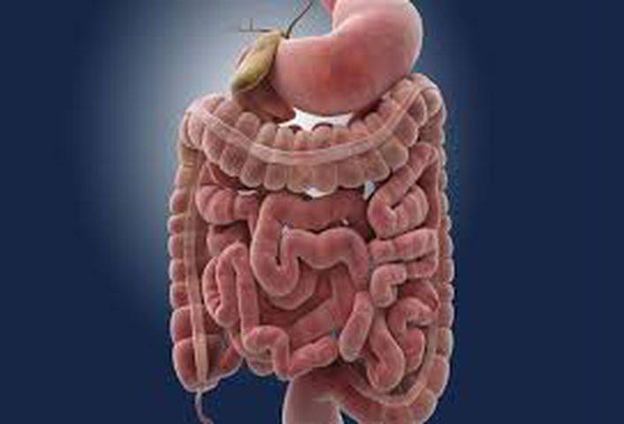 دراسة: التشخيص المبكر ينقذ مرضى سرطان الامعاء من الموت