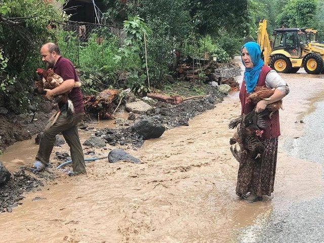 زلزال يضرب تركيا وفيضانات جارفة في طرابزون