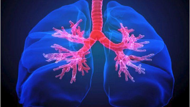 """أول """"أطلس"""" للرئة البشرية يبشر بعلاج ثوري للربو!"""