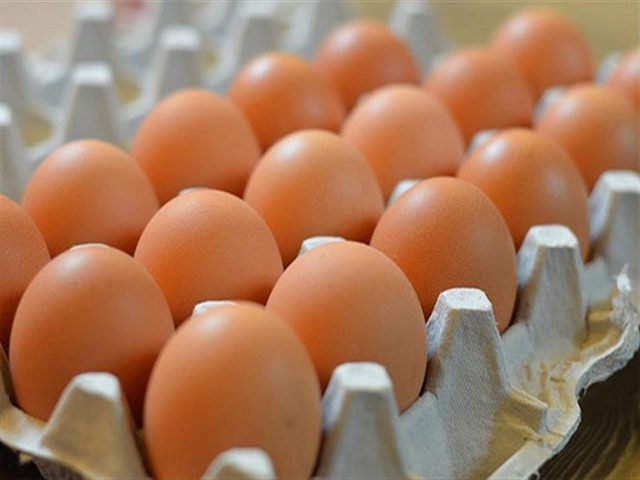 الزراعة: ما أُشيع عن انخفاض اسعار البيض مؤخراً غير صحيح