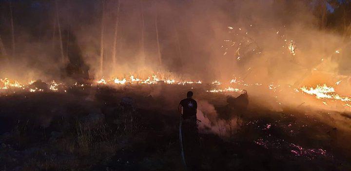 حرائق كبيرة تلتهم 3 دونمات زراعية في محافظة جنين