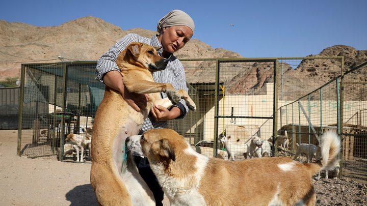 انتشار أكل لحوم الكلاب في الأردن يثير سخطا