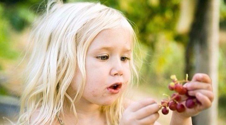 تعرف على أنواع الخضراوات والفواكة الخطيرة على صحة الأطفال