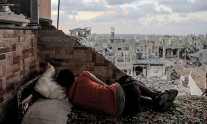 الكشف عن خطة لتأمين مئات الأسر من فاقدي المأوى في غزة