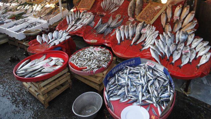 أحشاء الأسماك وعظامها أكثر فائدة من لحومها