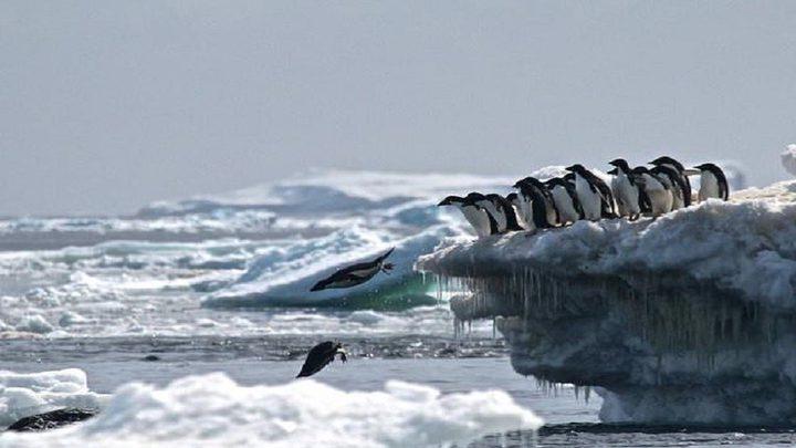 تغير جذري مفاجئ في القطب الجنوبي