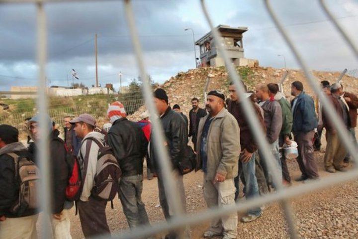 أبو جيش : الاحتلال يسرق 30 مليار شيقل من حقوق عمال فلسطين