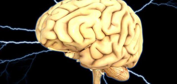 كيف يرسل المخ إشارات إلى الأعضاء للتحرك؟