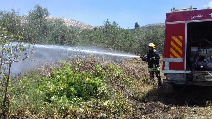 الدفاع المدني يخمد حريقاً نشب في أرض زراعية بقلقيلية