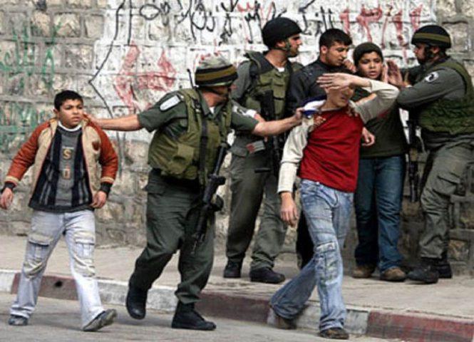 الاحتلال يعتقل طفلين شقيقين من الخليل