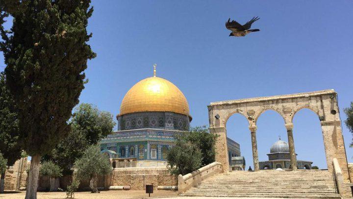 عيون الفلسطينيين إلى القدس ترحل كل يوم