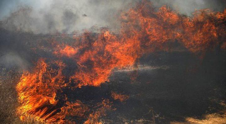 """الاحتلال يزعم اندلاع حريق في غابة """"شوكداه"""" بفعل البالونات"""