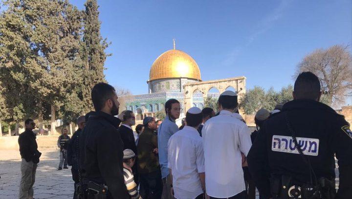 مستوطنون يقتحمون المسجد الأقصى ويؤدون طقوسا تلمودية