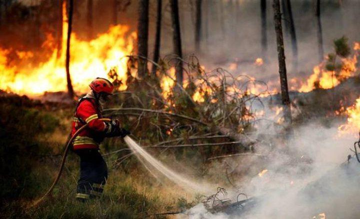 الدفاع المدني: 100 حريق في أعشاب وأشجار خلال 10 ساعات