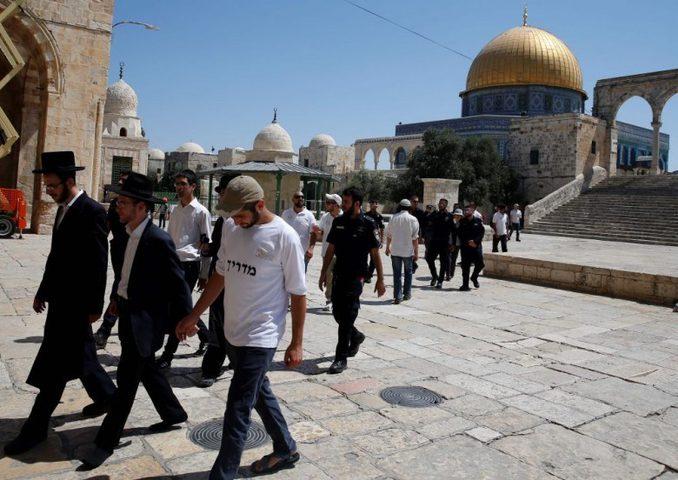 """""""جماعات الهيكل"""" تدعو لاقتحامات واسعة للمسجد الأقصى غدا"""