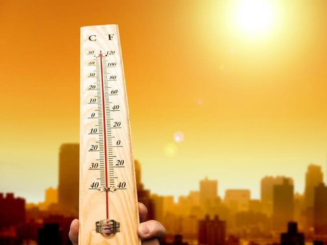 نهار الجمعة: طقس حار يسيطر على فلسطين