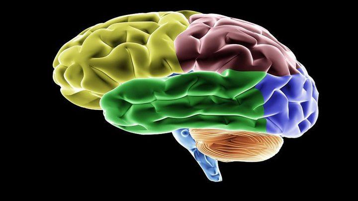 مهنة تسبب في تقلص حجم الدماغ