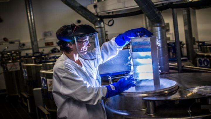 خلايا صناعية مبتكرة لعلاج السرطان