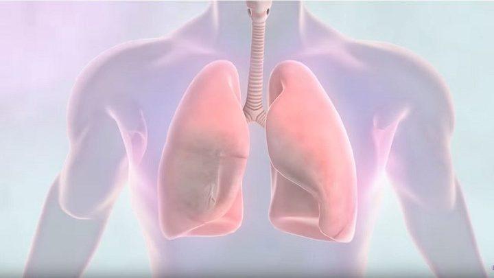 كيف نحمي أنفسنا من سرطان الرئة؟
