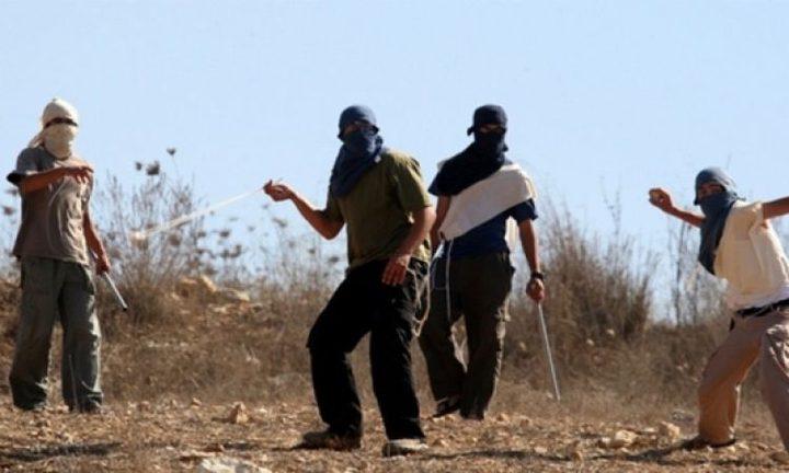 مستوطنون يستهدفون صالة أفراح جنوب نابلس