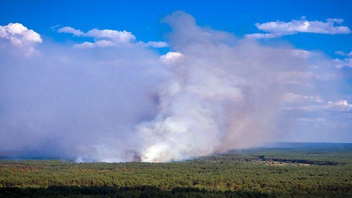 تأثير دخان حرائق الغابات على صحة الإنسان