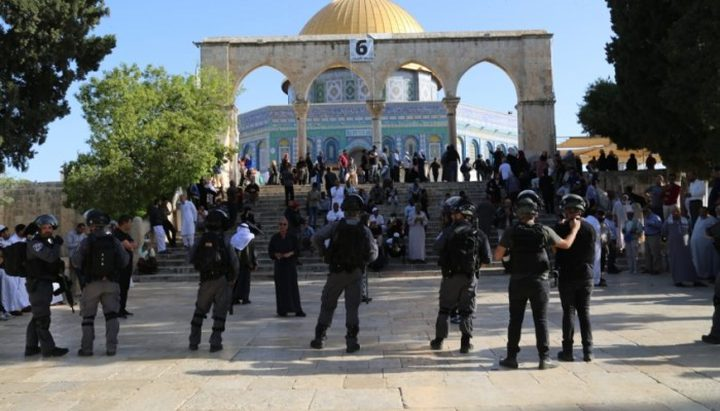 الحكومة تطالب مجلس الأمن باتخاذ تدابير عاجلة ضد انتهاكات الاحتلال