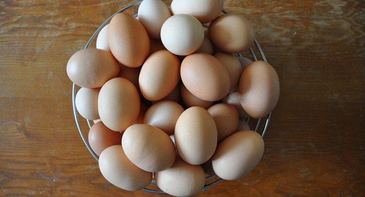 هذا ما حصل لفتاة بعد أن سلقت البيض في الميكرويف