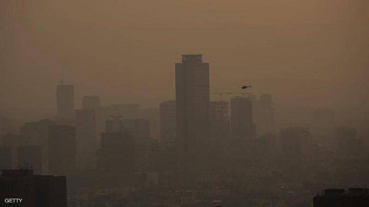 شجرة صناعية للحد من التلوث في المكسيك