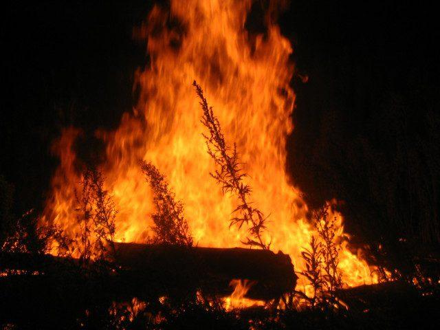 الاحتلال يزعُم اندلاع حريق في المستوطنات المحيطة بقطاع غزة