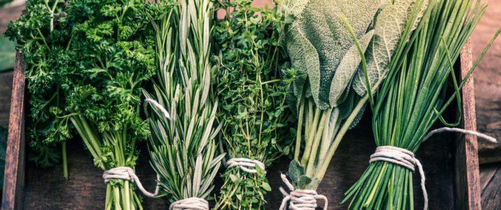 كيف تعمل الأعشاب على حل مشكلة عسر الهضم؟