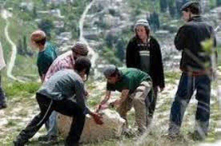 مستوطنون يزرعون الأشجار في أراضي قرية الجبعة جنوب غرب بيت لحم