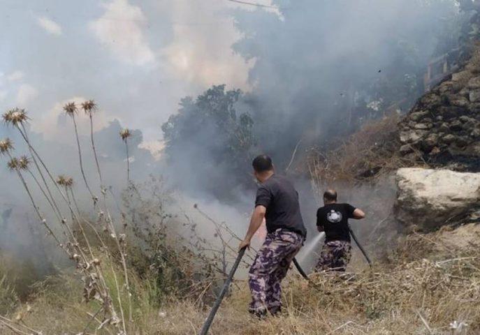 حريق يلتهم 300 شجرة زيتون غرب جنين