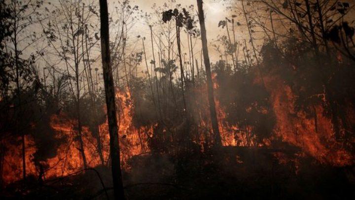 """""""البابا فرنسيس"""" يطالب العالم بالتكاثف لإخماد حرائق الأمازون"""