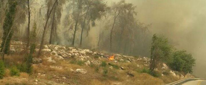 حرائق هائلة بالقرب من بيت شيمش