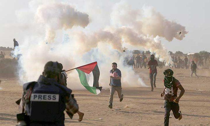 فلسطين… نضال الذاكرة