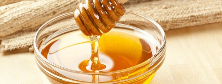 شاهد دب يتناول العسل بالملعقة في روسيا