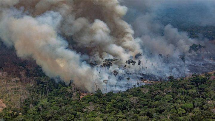 """بعد الأمازون.. """"رئة الأرض الثانية"""" تحترق!"""