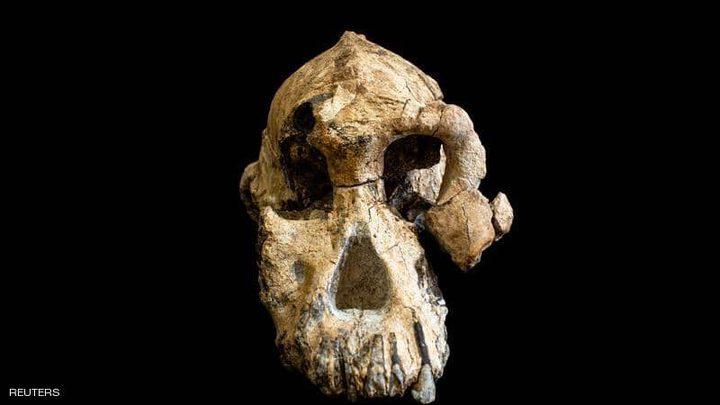اكتشاف جمجمة عمرها 3.8 مليون عام في أثيوبيا