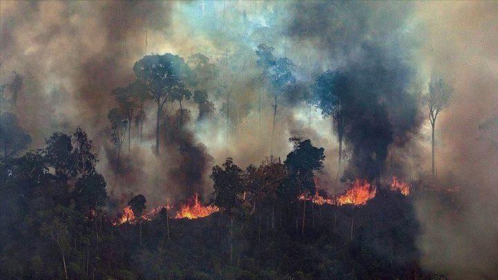 حرائق الأمازون تمتد والبرازيل تدرس عروض لإخمادها
