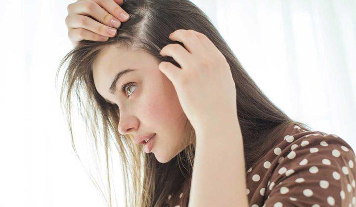 حل مشكلة فراغات الشعر