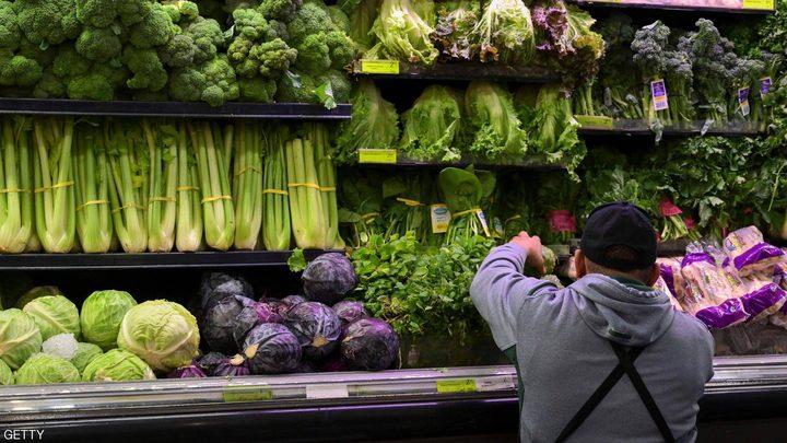 الفرق في الفوائد الغذائية بين الخس الأخضر والأحمر