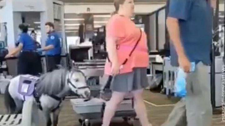 سيدة تصطحب حصانها إلى نقطة تفتيش القطارات